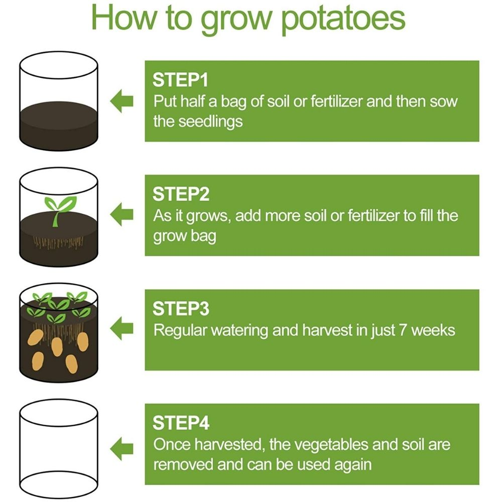 plant potato in grow bag