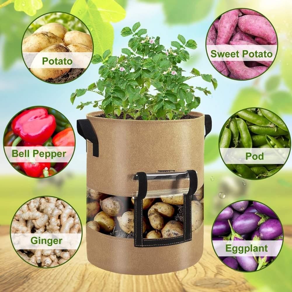 best growing potatoes bag